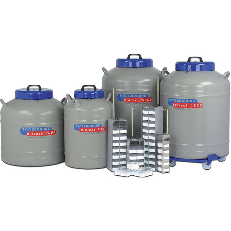 Cryogenic Storage