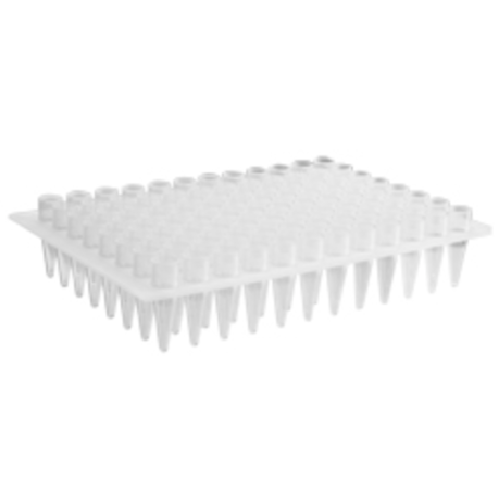 96 Well PCR Plates for Mega Base, no skirt, elevated wells, Axygen