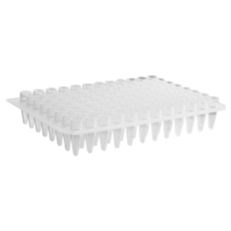 96 Well Clear PCR Plate, no skirt, elevated wells, Axygen