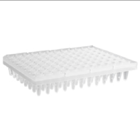 96 Well Clear PCR Segmented Plate, Axygen
