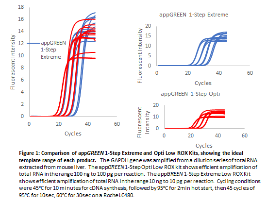 appGREEN 1-Step Opti Low ROX RT-qPCR Kit, 500 reactions