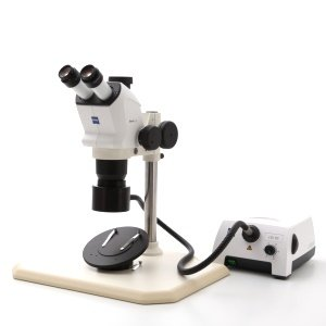 Stemi 508 Stereo Microscopes