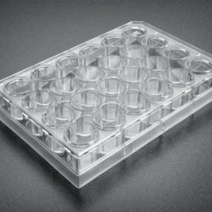 Corning® BioCoat™ Matrigel® Invasion Chambers with 8.0?m PET Membrane in two 24 Well Plates, 24/Pack, 24/Case