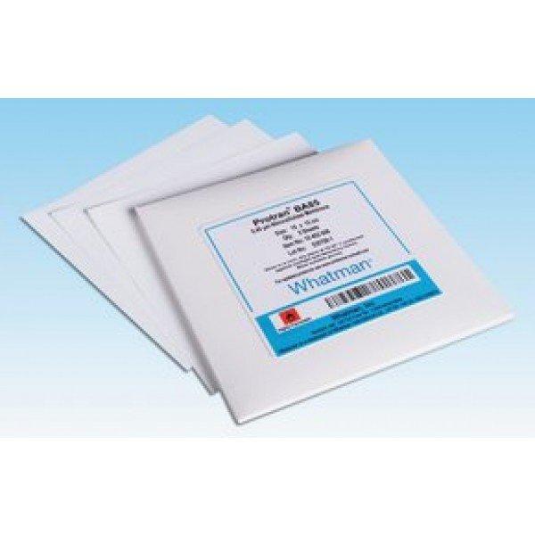 Membrane filter, Nucleopore, 0.2um, 47mm, Whatman