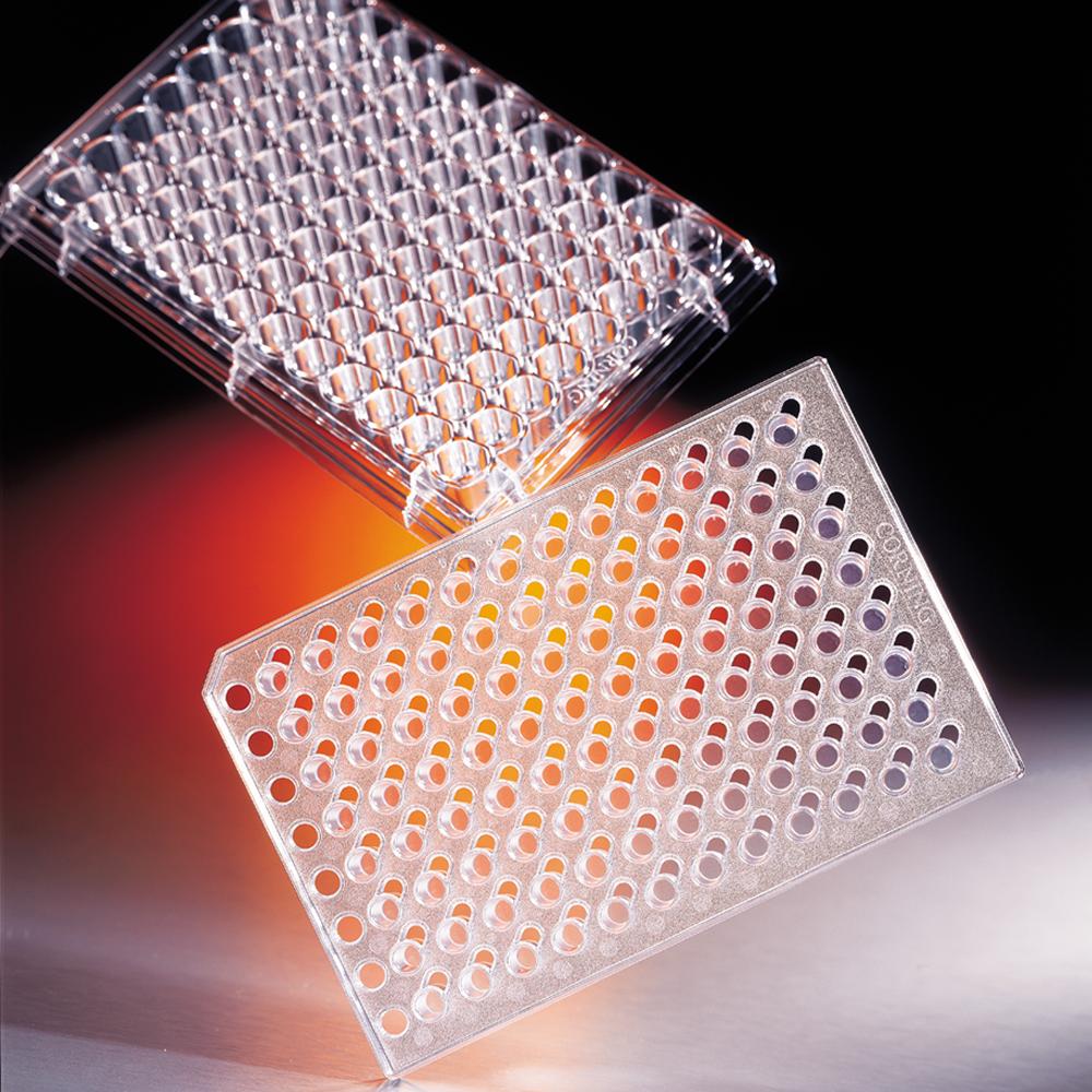 HTS-Transwell-96, 0.4um, individual, PC membrane, Corning