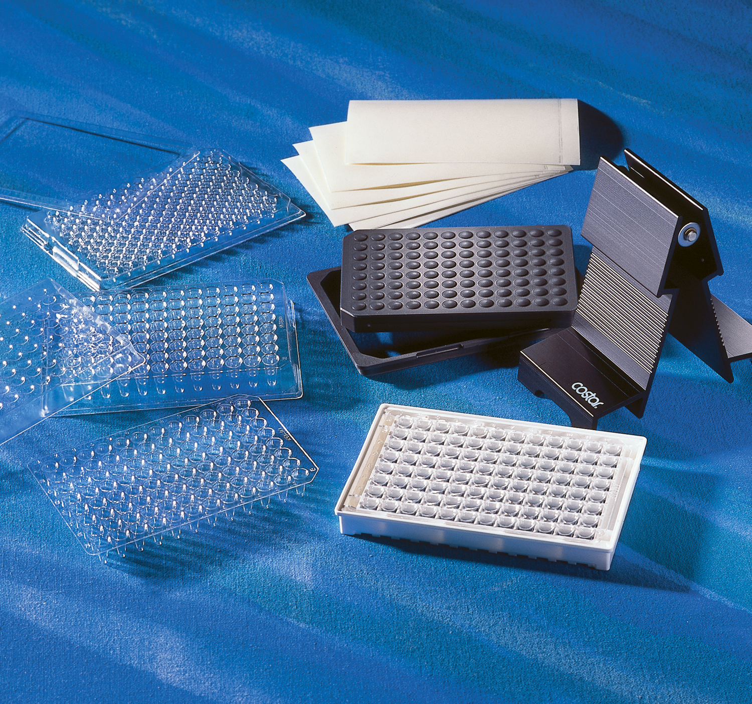 96 Well Model P Polycarbonate PCR Plate, Corning