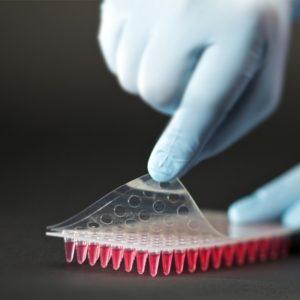 PeelASeal Foil, 125mm x 78mm, Sheets, Sterile
