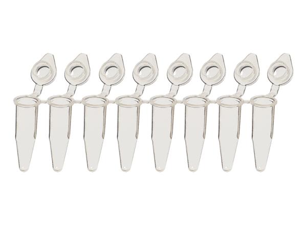 8-Strip 0.2ml PCR Tubes, Angled Domed Caps, Natural, Appleton