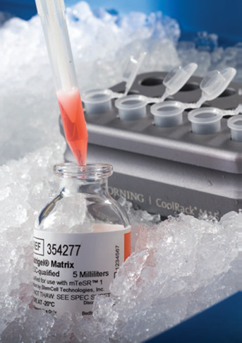, 3D Cell Culture is here!
